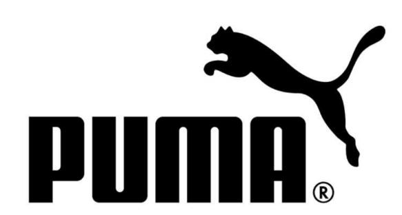 Buty sportowe damskie Enzo 2 białe Puma 193257 03