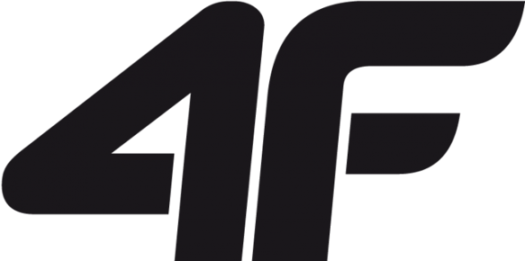 Czapka męska 4F zimowa L/XL