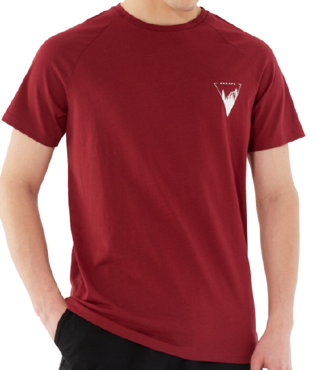 T-shirt męski OUTHORN TSM642 bordowy bawełna