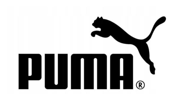 T-shirt męski PUMA ESS Small Logo 851741 biały